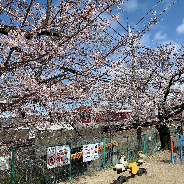 額田山荘会館児童遊園