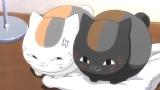 f:id:yaneshin:20200509064152j:plain