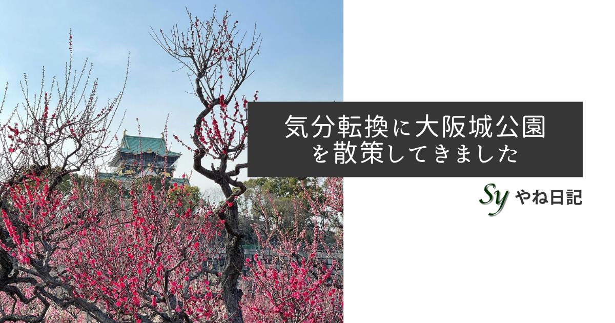 f:id:yaneshin:20210221134633p:plain