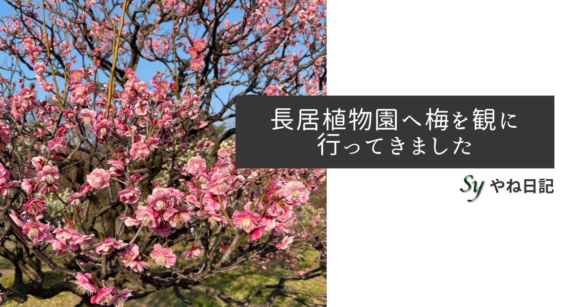 f:id:yaneshin:20210221222520p:plain