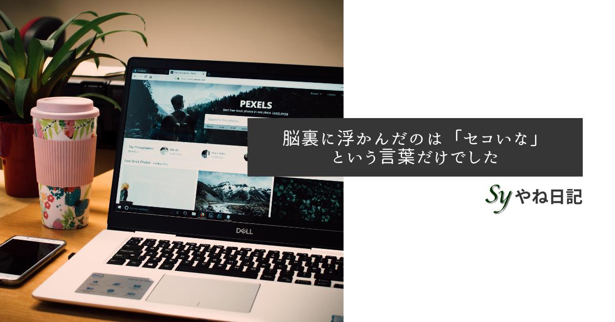 f:id:yaneshin:20210228153516p:plain