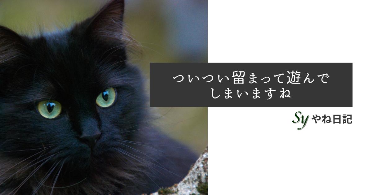 f:id:yaneshin:20210304185533p:plain