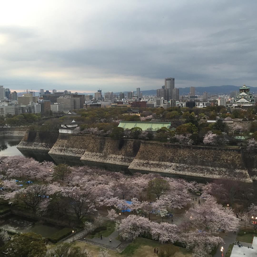 レストランシャトーから見た大阪城(昼)