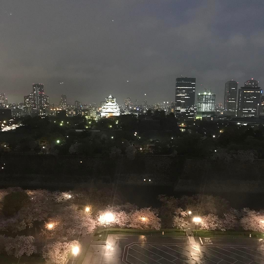 大阪城公園の夜桜
