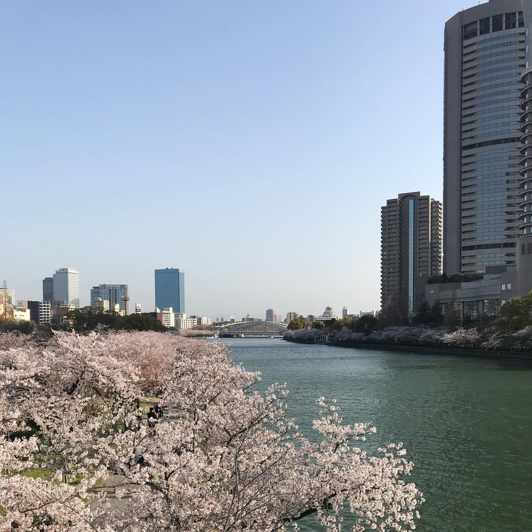 源八橋から大阪城方向