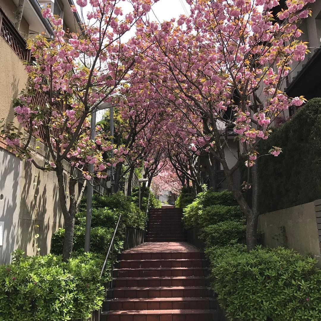上石切町の階段
