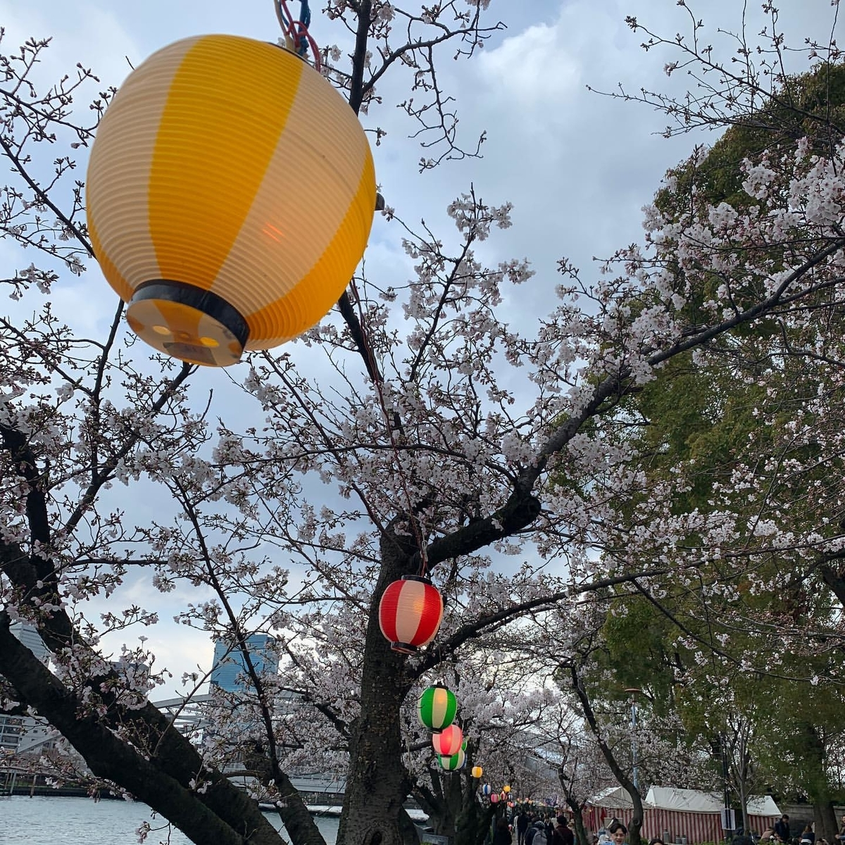 川沿いに吊るされた提灯