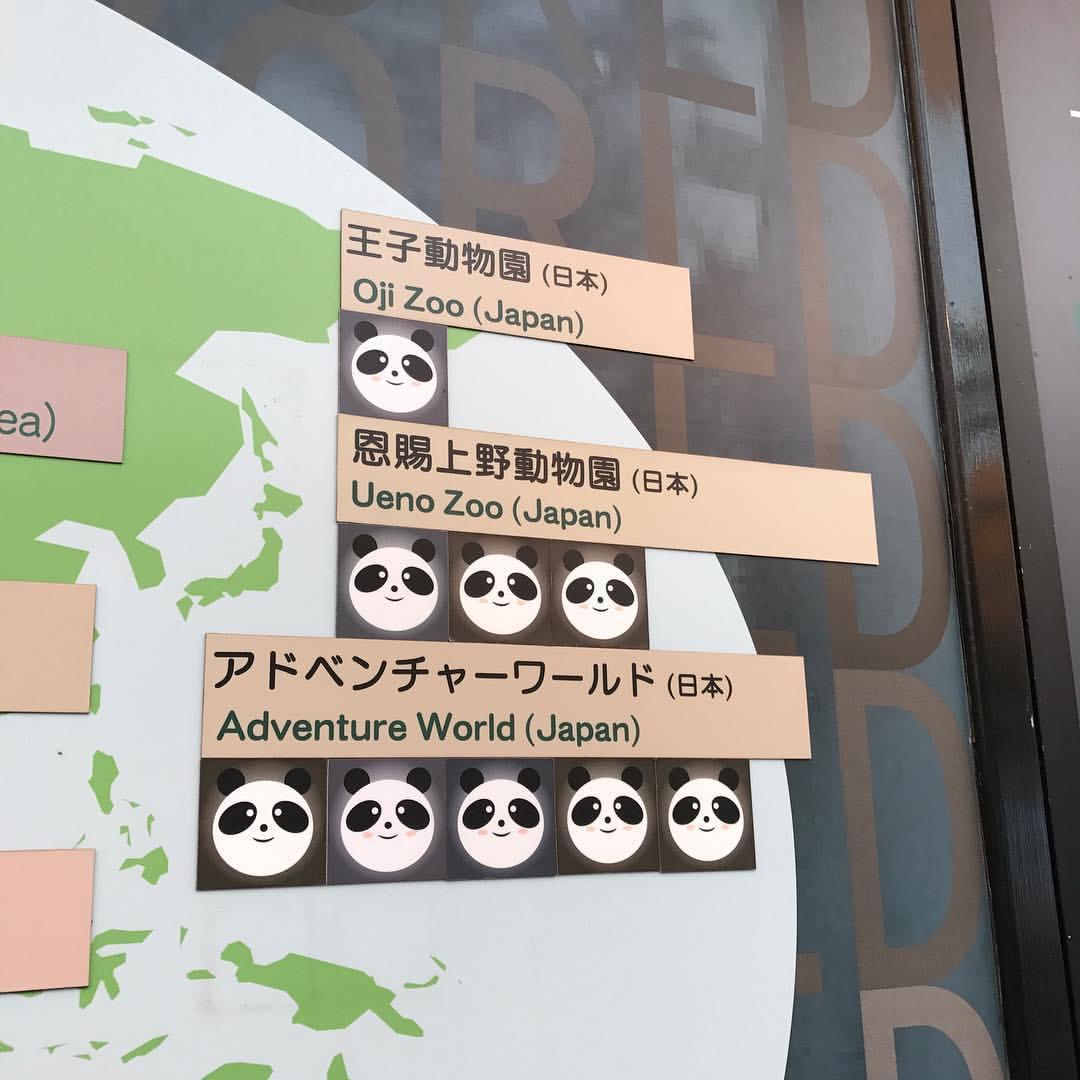 パンダの解説2