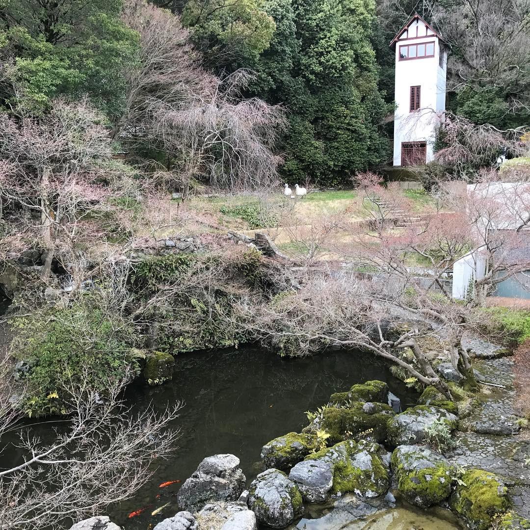 山荘内の庭園その1