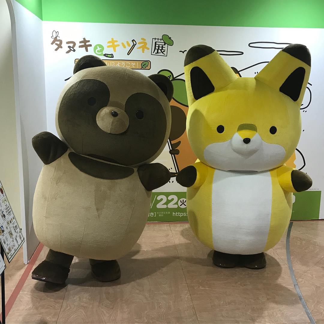 「タヌキ」と「キツネ」