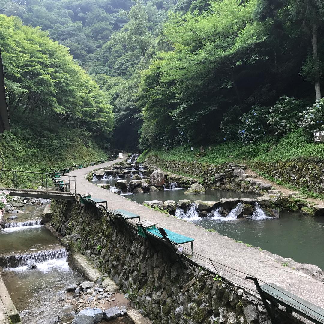 千早川マス釣り場1