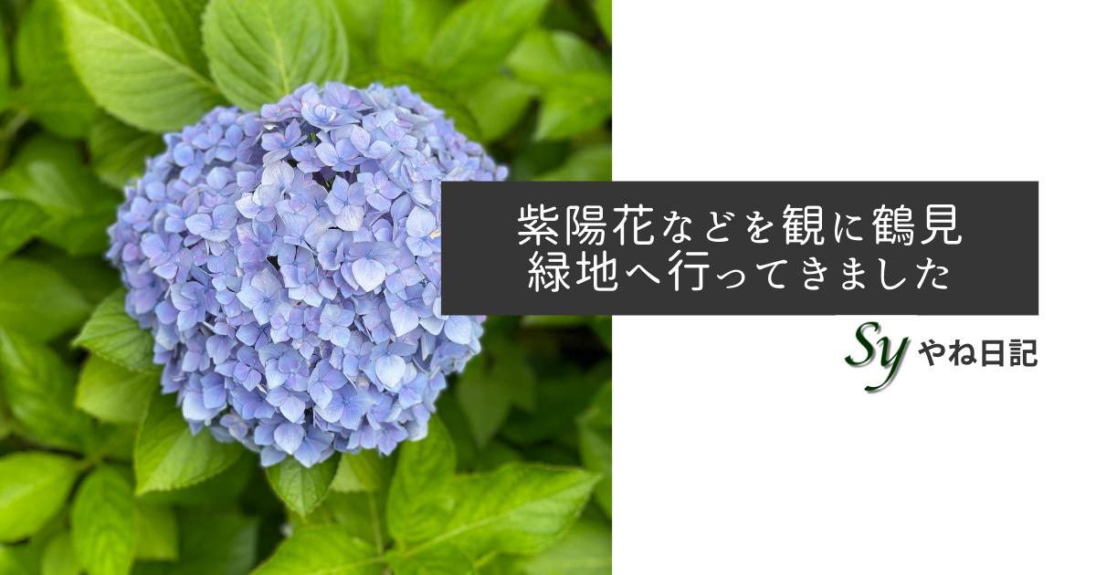 f:id:yaneshin:20210606225917p:plain