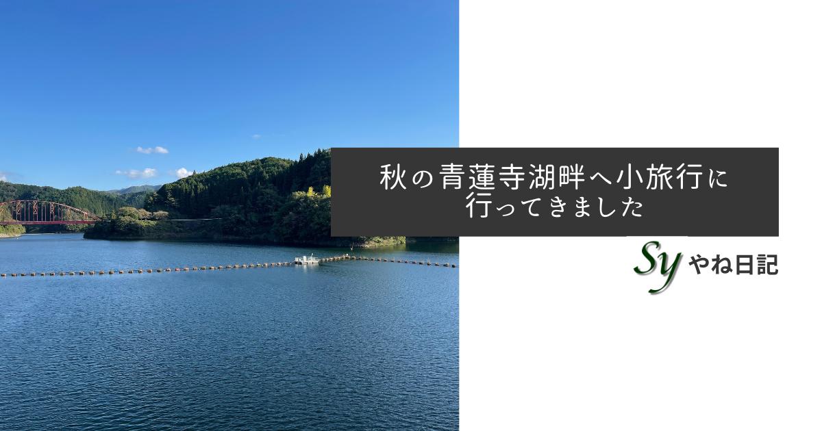 f:id:yaneshin:20211014230927p:plain