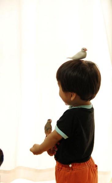 f:id:yaneurao:20110606023243j:image