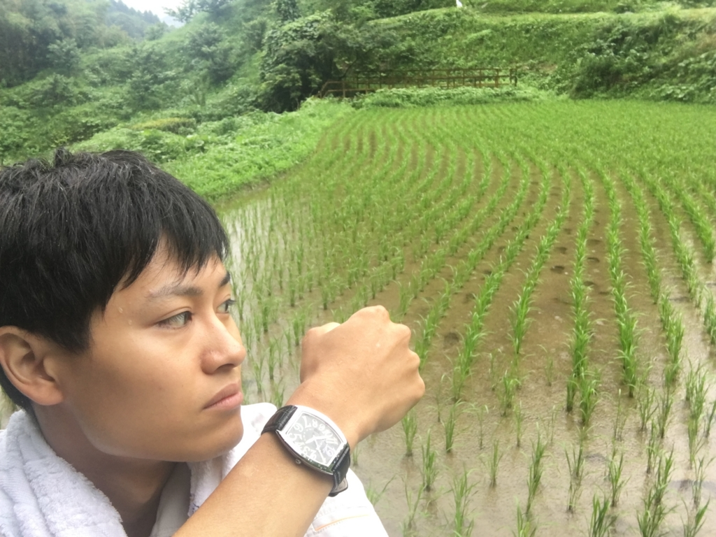f:id:yang_hua:20160625155254j:plain