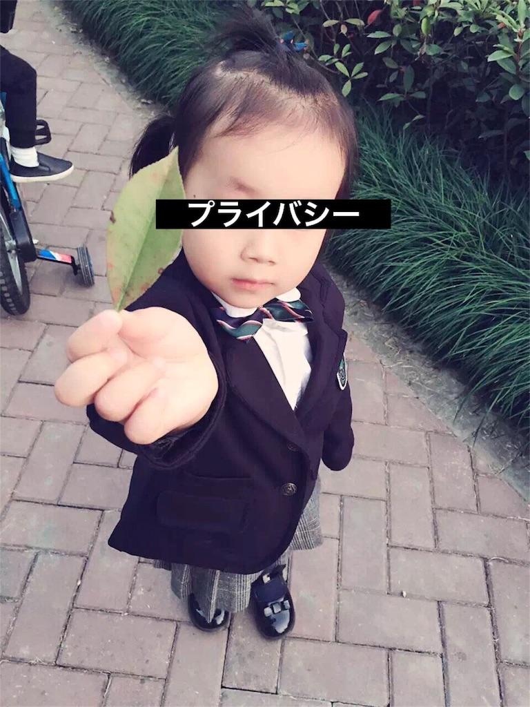 f:id:yanmei:20170308002244j:image