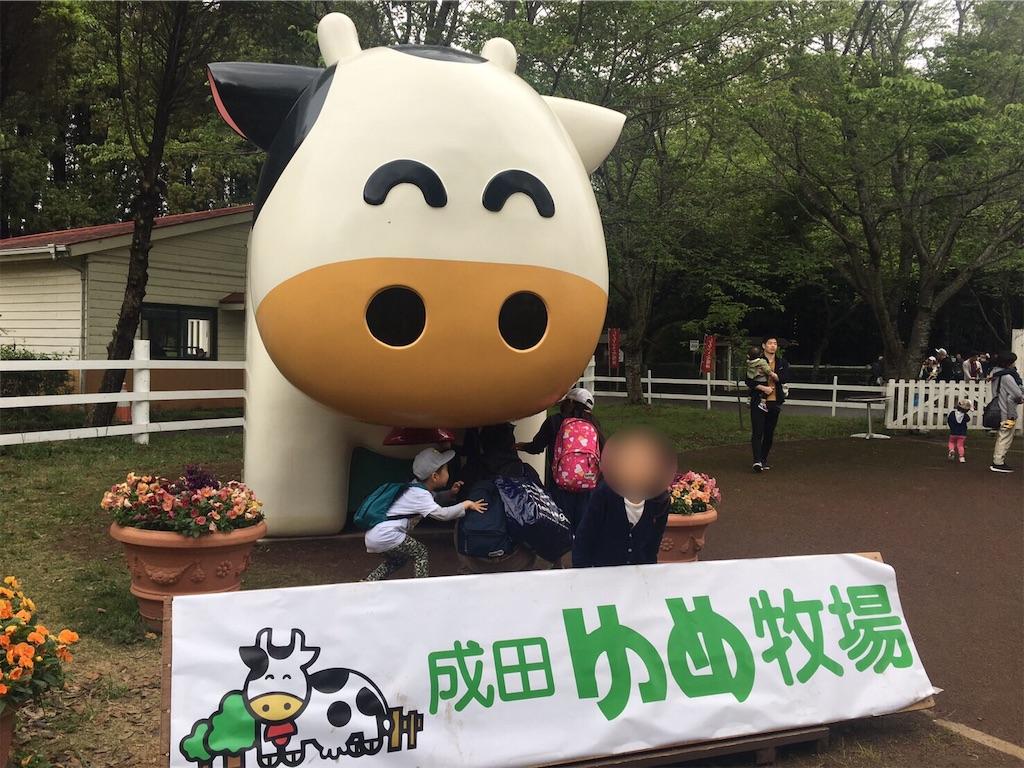f:id:yanmei:20190507224911j:image