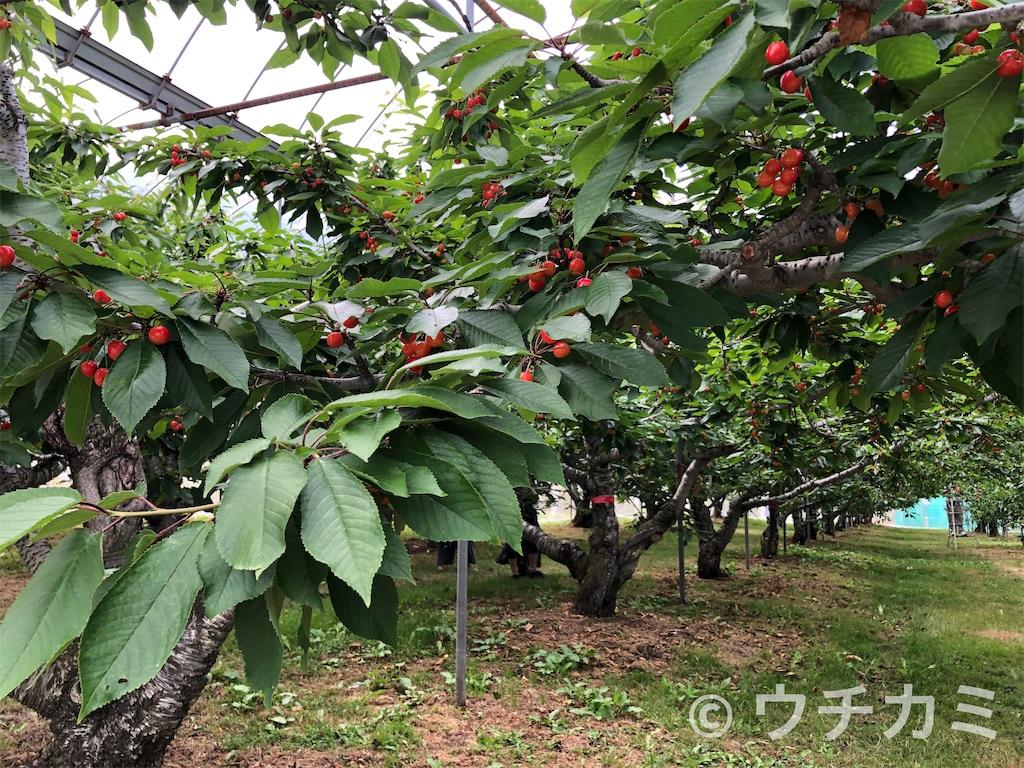 f:id:yanmei:20210722000334j:image