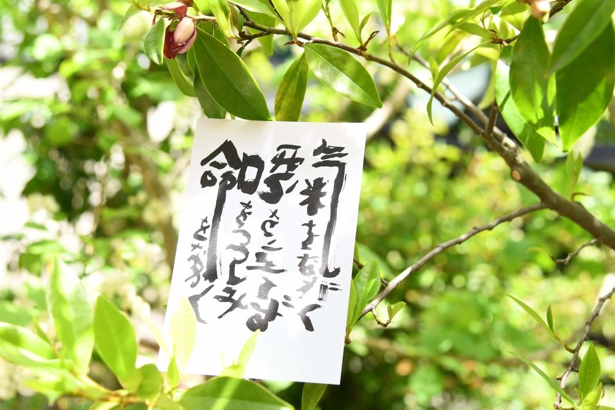 f:id:yano-azmie:20200516172838j:plain