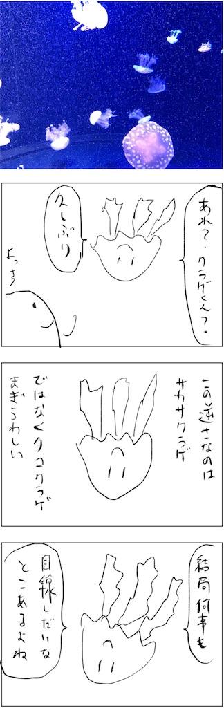 f:id:yanoyu22:20190301235230j:image
