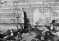 浦賀ドック(デジカメ読み込み) British Field, Xenotar 135/3.5