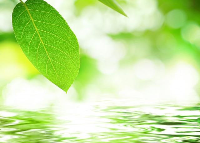 瞑想は今の瞬間に気づくための心のトレーニング