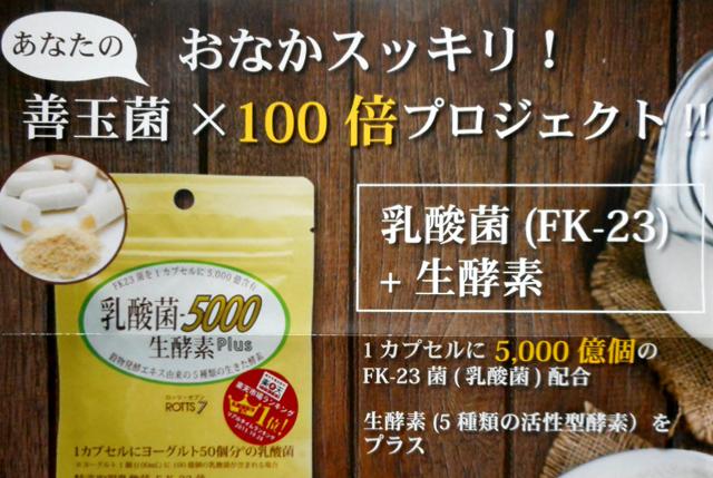 乳酸菌‐5000 生酵素plus