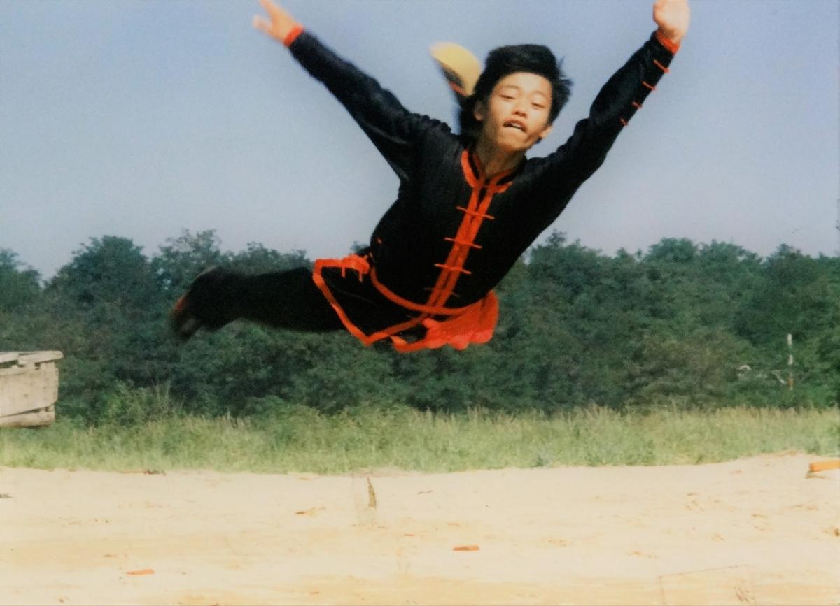中国武術・カンフーの山ほどある種類、徐言偉ブログ