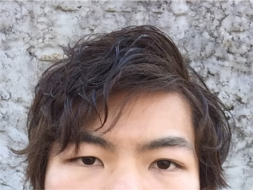 f:id:yanyoko0924:20170202020617j:image