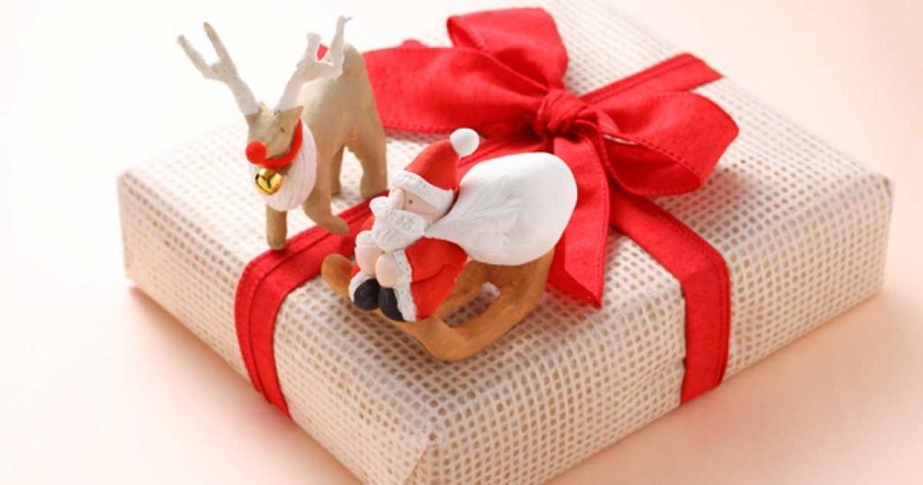2歳と5歳の男の子兄弟におすすめのクリスマスプレゼントを考えます。