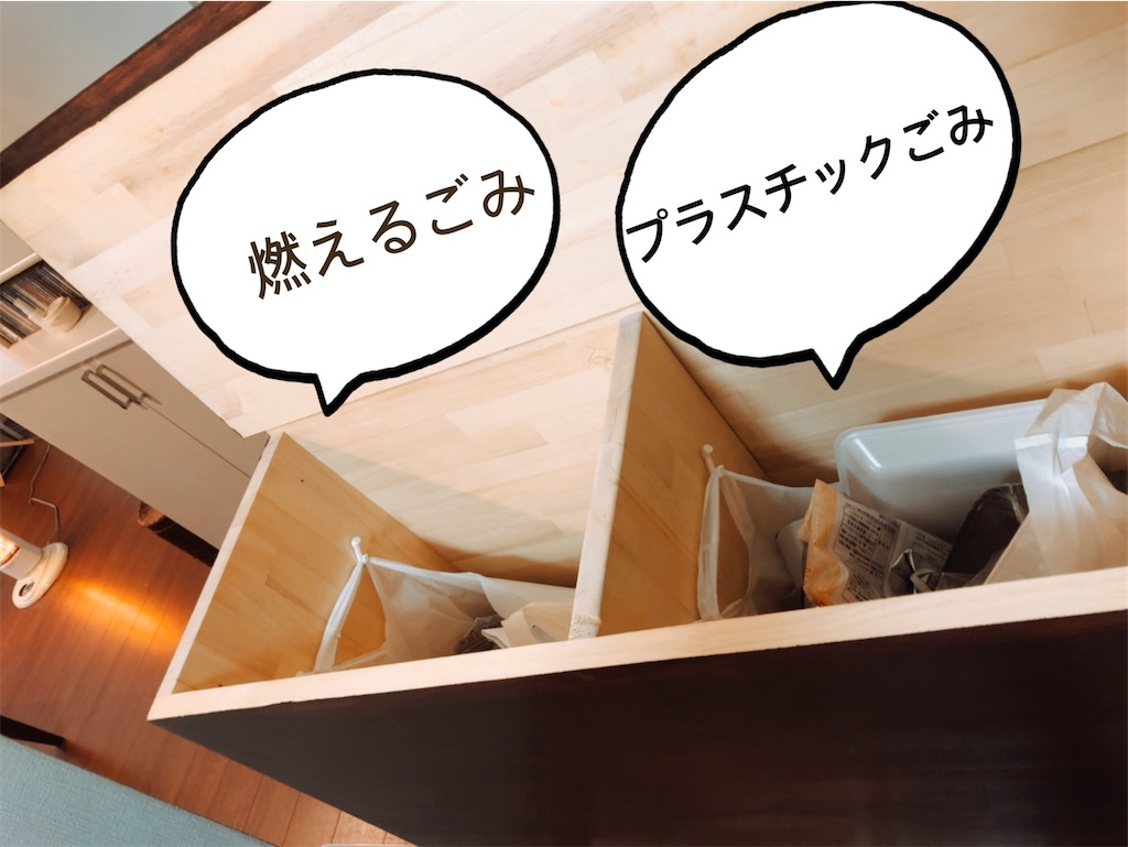 f:id:yappariouchi:20201224150619j:image