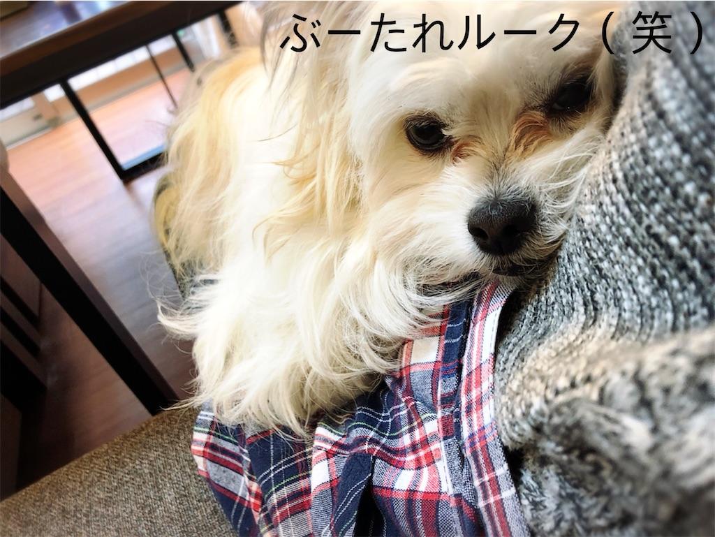 f:id:yappariouchi:20210115113508j:image