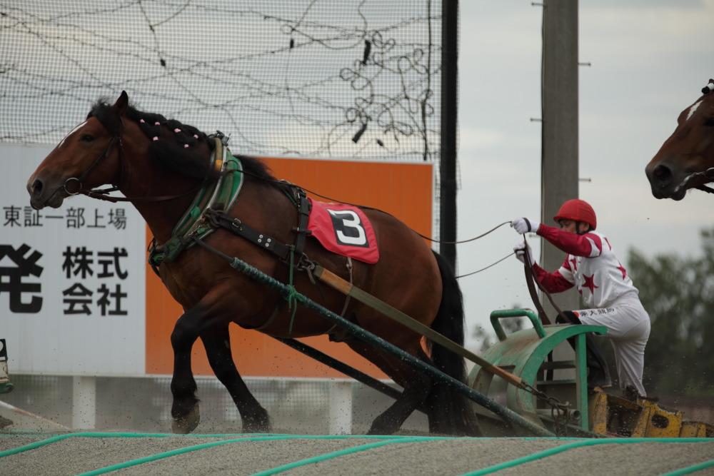 f:id:yapuu-rider:20181008094442j:plain
