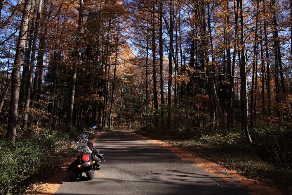 f:id:yapuu-rider:20181029140244j:plain