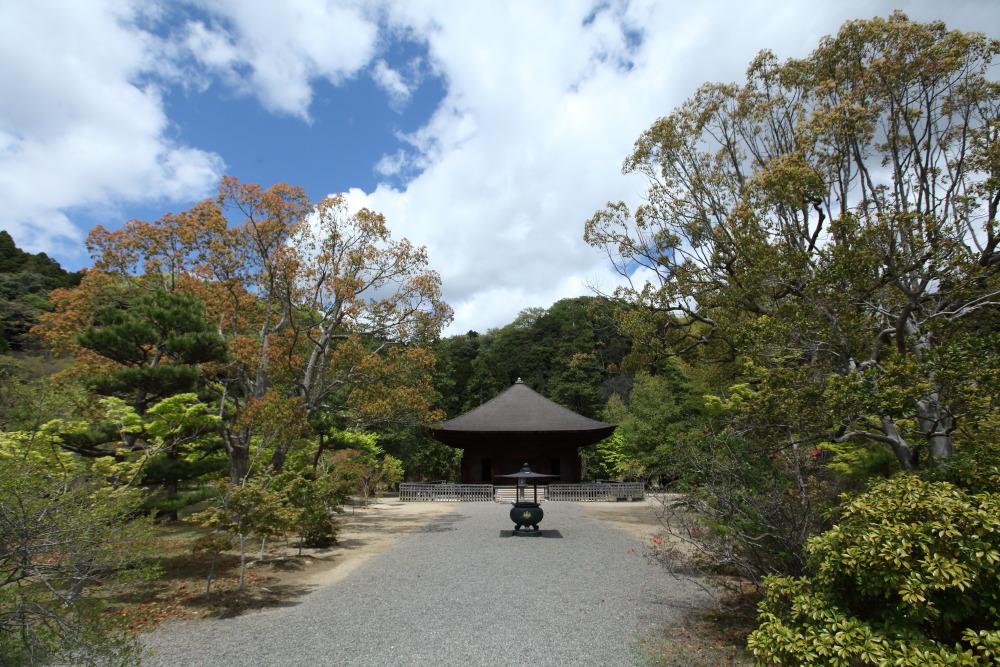 f:id:yapuu-rider:20181029205229j:plain