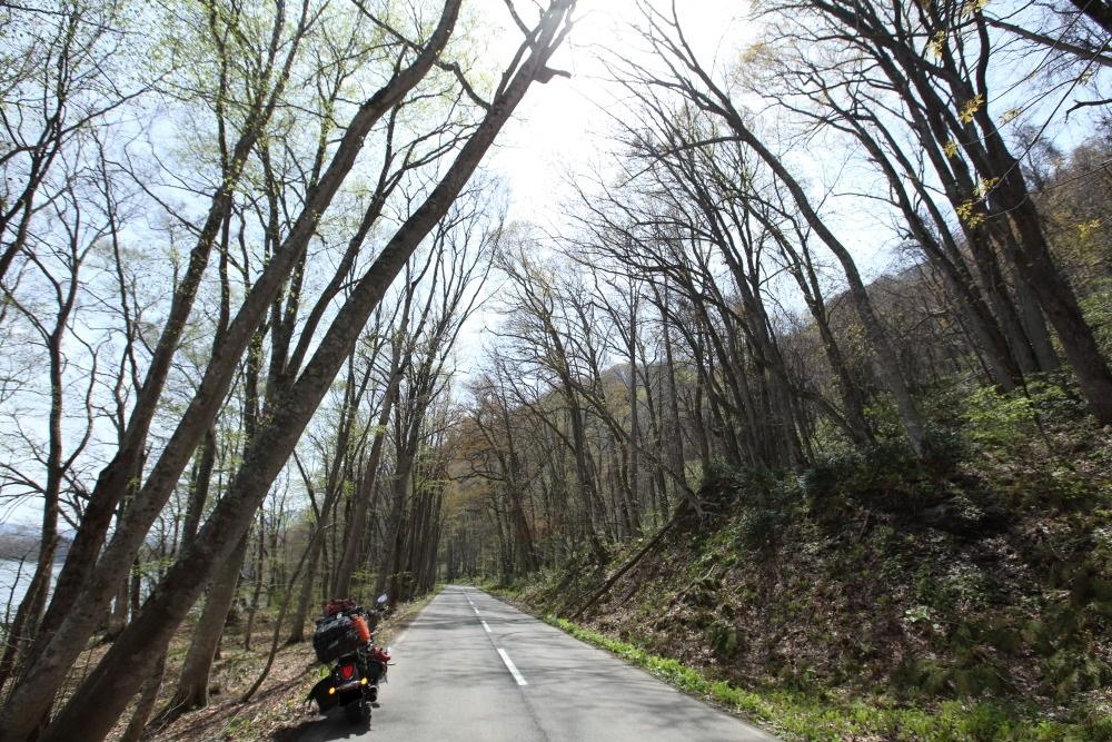 f:id:yapuu-rider:20181103204846j:plain