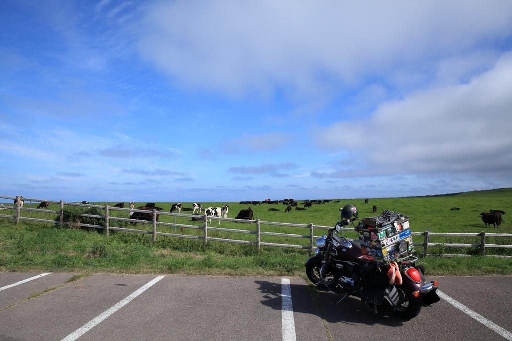 f:id:yapuu-rider:20181127202956j:plain