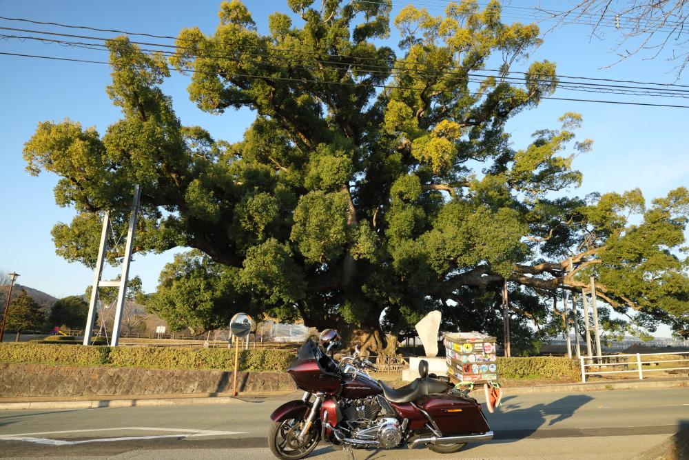 f:id:yapuu-rider:20190112202030j:plain