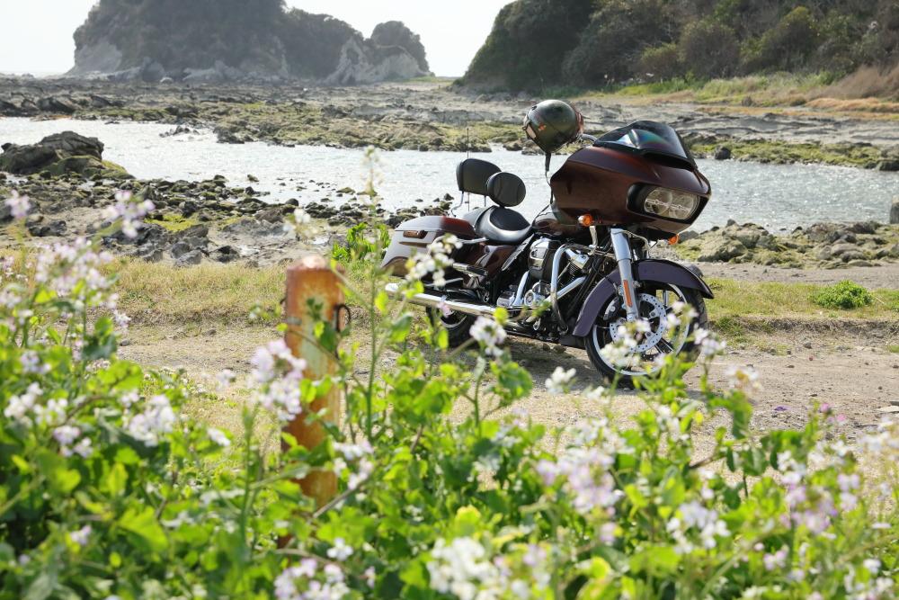 f:id:yapuu-rider:20190331205636j:plain