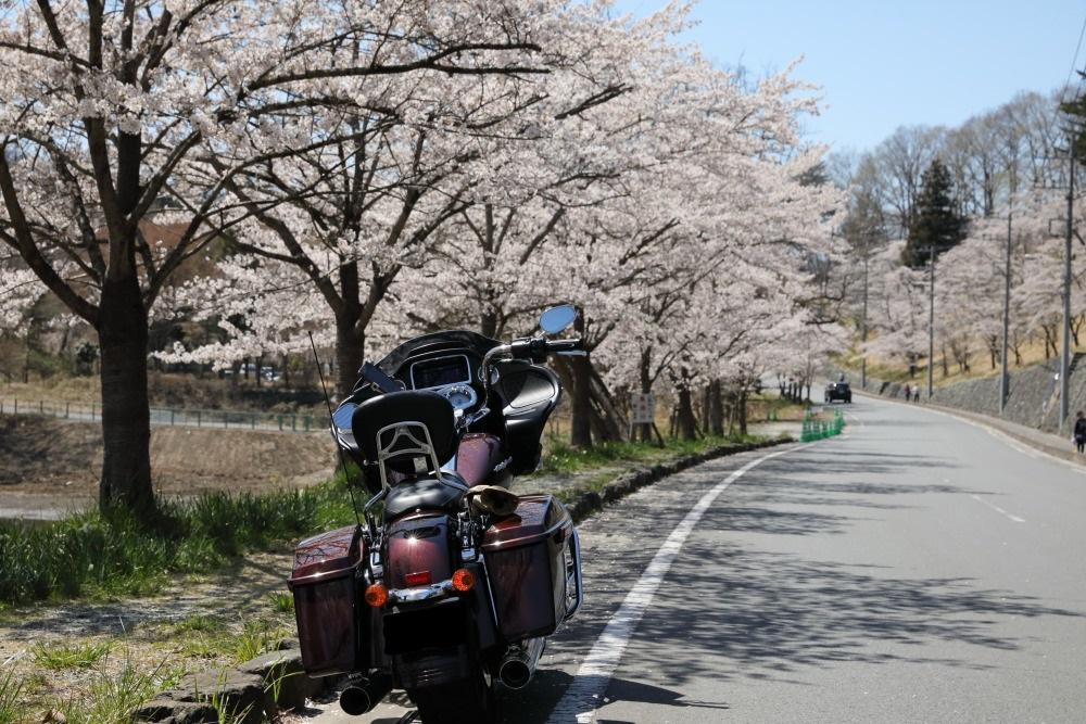 f:id:yapuu-rider:20190417202452j:plain