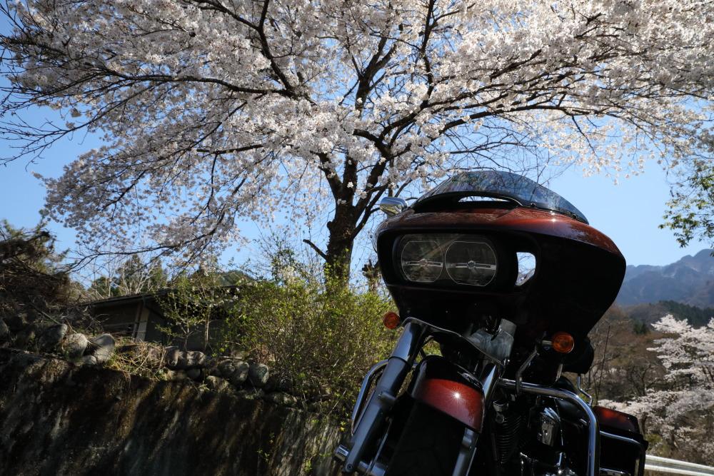 f:id:yapuu-rider:20190417202541j:plain