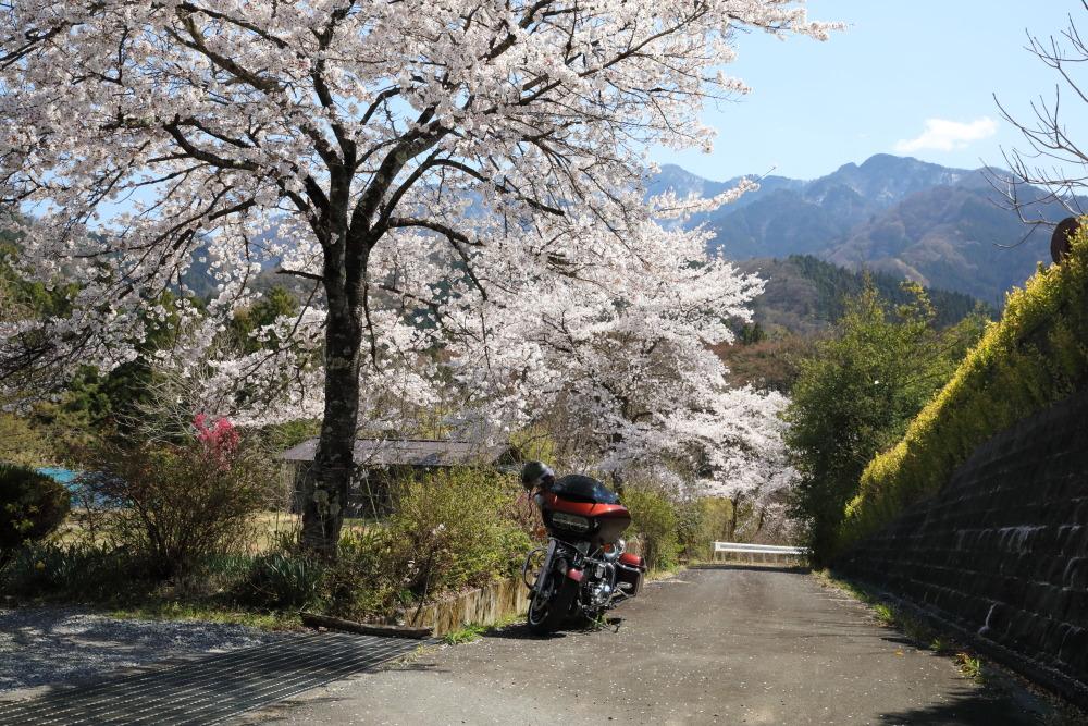 f:id:yapuu-rider:20190417202615j:plain
