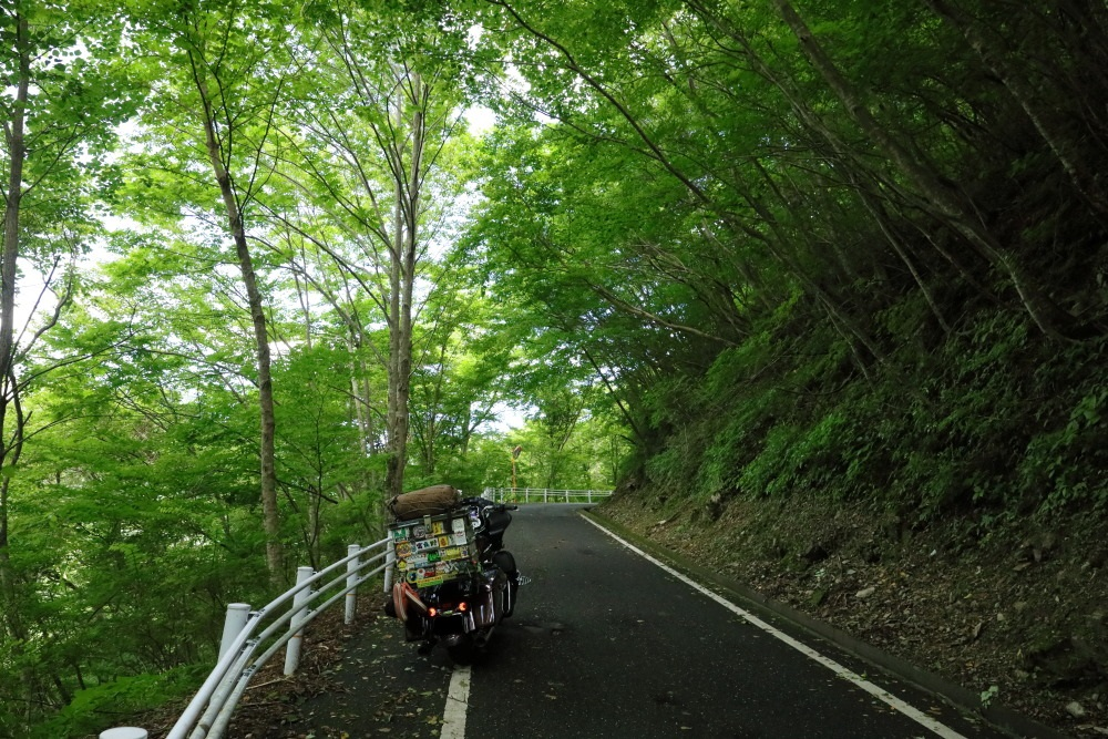 f:id:yapuu-rider:20190813214656j:plain
