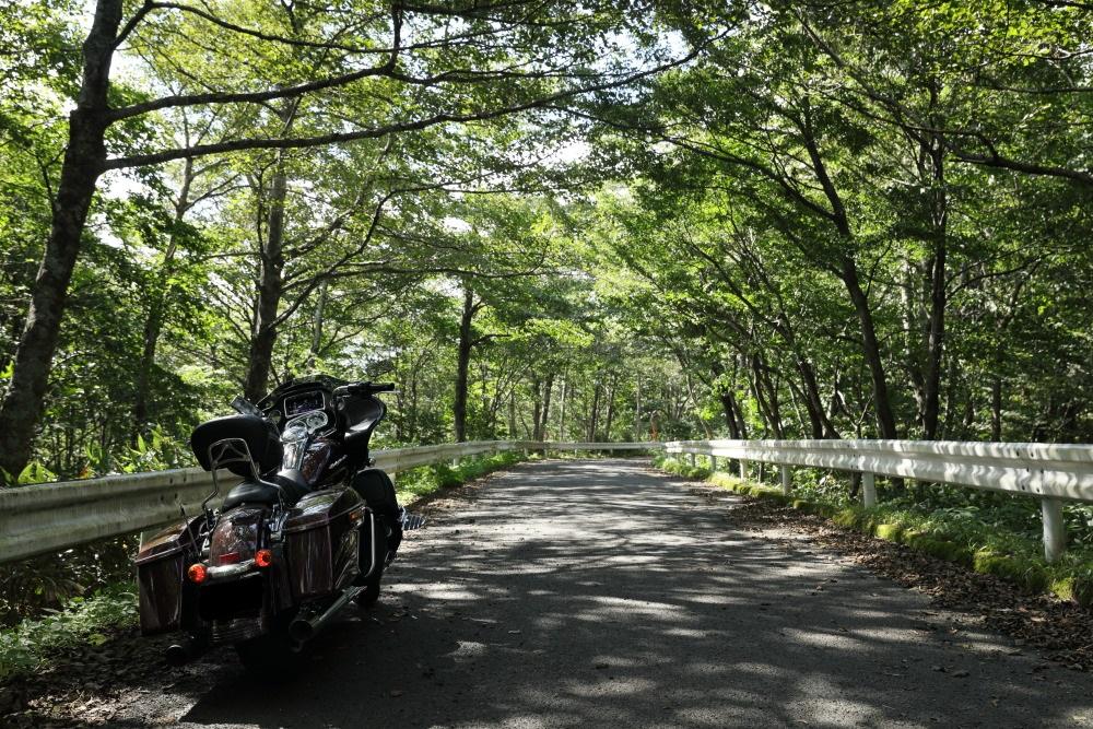 f:id:yapuu-rider:20190908142037j:plain