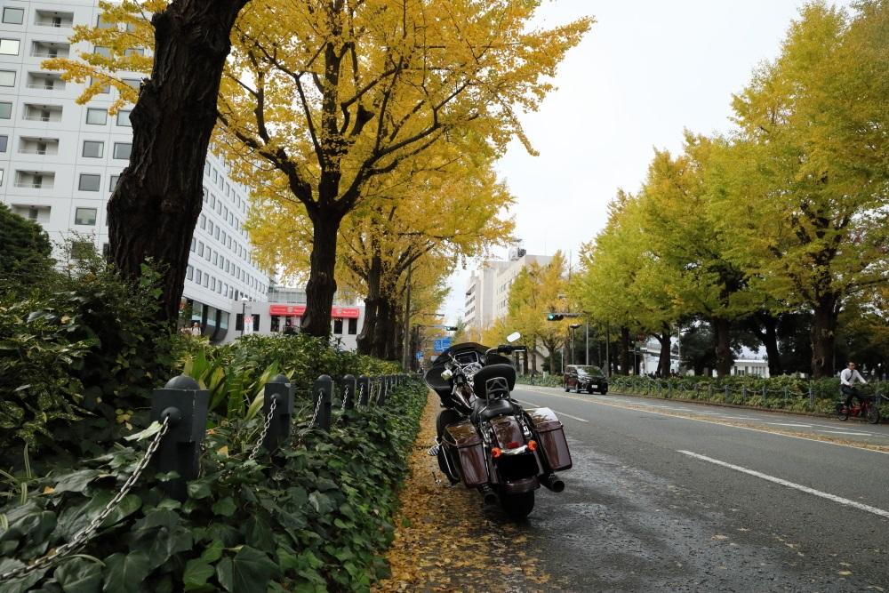 f:id:yapuu-rider:20191207111017j:plain