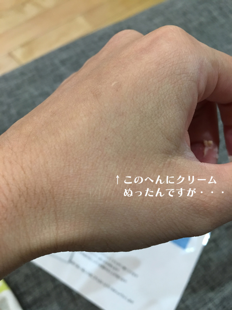 f:id:yaritaikoto100:20161121220900j:plain