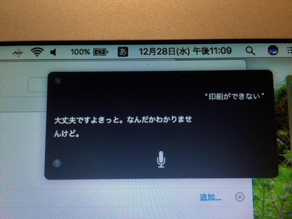 f:id:yarumomo:20161228222956j:plain