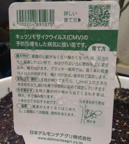 f:id:yasai18:20160522045027j:plain