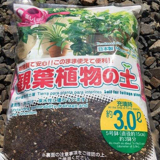 ダイソー観葉植物の土