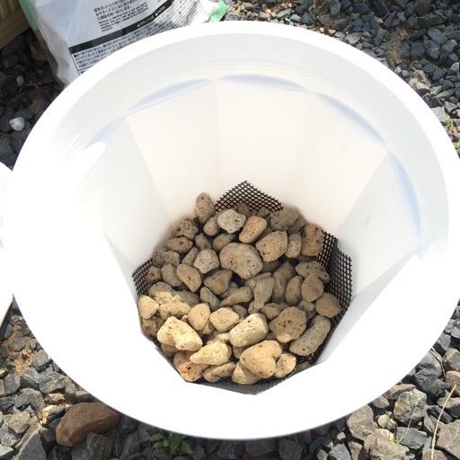 ダイソー鉢底石2